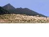 山景A005.bmp