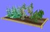 菜園01.m3d