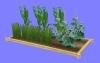菜園2.m3d