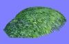 植栽A003.m3d