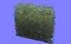 低木HL07.m3d