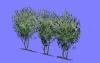 低木HL18.m3d